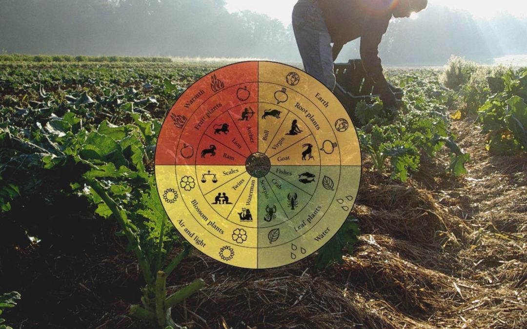 Nutrition & Biodynamic Principles