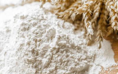 Alloxan, Flour and Type 1 Diabetes